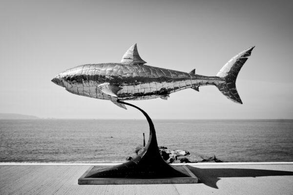 side view of shark sculpture